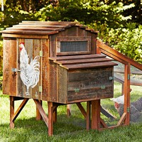 Reclaimed Rustic Coop with Painted Chicken & Run