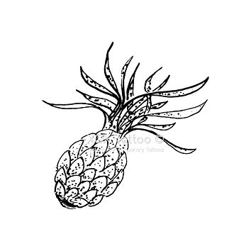 Pineapple Waterproof Temporary Tattoos Lasts 3 to 4 days Choose Small, Medium or Large Sizes
