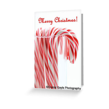 Red Candy Christmas Greeting Card Holiday Greeting Card  Photography Note Card Striped Candy Cane