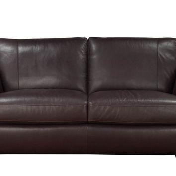 Anapo Leather Loveseat by Natuzzi Editions