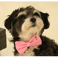 Pink Dog Bow Tie collar, Bow tie attached to dog collar, Pet accessory