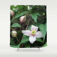 summer pink flower on vine. backyard floral photography. Shower Curtain by NatureMatters
