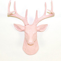 Cameo Pink Deer Head - The MINI Juno - Cameo Pink Resin Deer Head- Deer Antlers Mounted- Faux Head Wall Mount