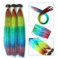 Rainbow Multicolor Straight Grizzly Feather Hair Extensions