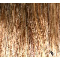 "21"" Clip In Remy Hair Extensions: Chestnut Brown/ Blonde No. P6-27"