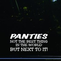 PANTIES - not the BEST thing in the world - but NEXT TO IT! Funny die cut decal / sticker