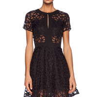 Lucca Couture Sheer Panel Dress in Black