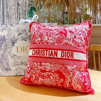 Christian Dior Embroidered Pattern Letter Logo Sofa Pillow Pillow #7