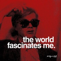 The World Posters by Andy Warhol at AllPosters.com