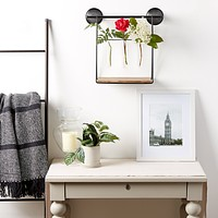 Industrial Look Wall-Shelf with Test Tube Vases