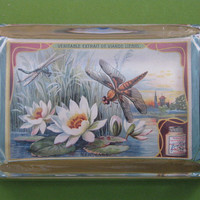 Floral Waterlily French Art Nouveau Trade Card Large Rectangle Glass Paperweight Home Decor