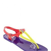 Dizzy Drop Colorblock Ankle Strap Purple Jelly Bean Sandals Size 8 Medium (B, M)