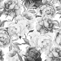 Clara Black & White Wallpaper