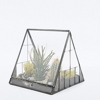 Urban Grow Pyramid Terrarium in Gun Metal - Urban Outfitters