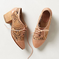 Laceside Oxfords