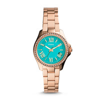 Cecile Small Three-Hand Stainless Steel Watch - Rose