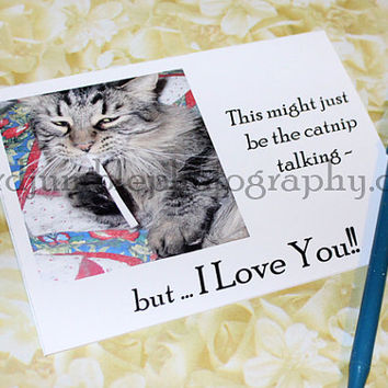 Catty Cards Greeting Cards. Krishna the Cat Might Be a Little Stoned, But He Loves You. Blank Tabby Kitty Card. Send for Birthday Holiday