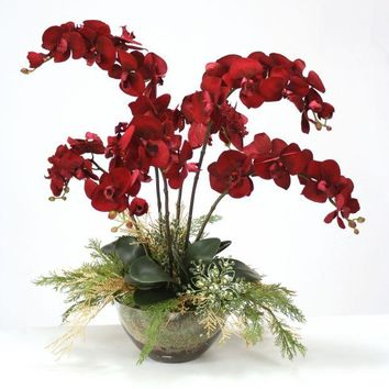 Burgundy Orchids with Gold Cedar in Glass Bowl