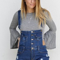Say It Ain't So Denim Distressed Overalls