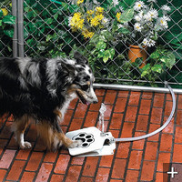 Doggie Water Fountain - Frontgate