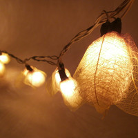 20 x Luffa Sponge string light with 3 m. wire and adapter for room and party decoration