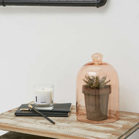 Pink Glass Cloche - Urban Outfitters