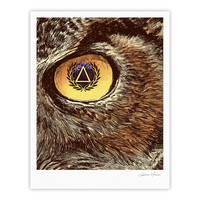 "BarmalisiRTB ""Sharp Eye"" Owl Fine Art Gallery Print"