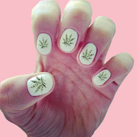 Marijuana / Weed / Pot / Stoner / 420 / 100 Dollar Bill Pot Leaf Nail Decals / Nail Art