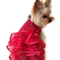 Lace Ruffle Dress with Flower Necklace- Shop By Designer -Diamonds in the Ruff Ruff- Dress Posh Puppy Boutique