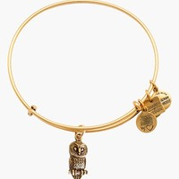 Women's Alex and Ani 'Ode to the Owl' Expandable Wire Bangle