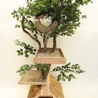 Adult medium Cat Tree House by PetTreeHouses on Etsy