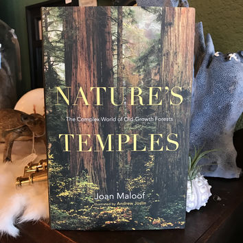 """""""Nature's Temples: The Complex World of Old-Growth Forests"""" by Joan Maloof"""