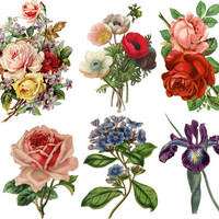 Temporary Tattoo - Set of 6 Vintage Floral - Various Patterns