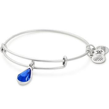 September Birth Month Charm Bangle With Swarovski® Crystal