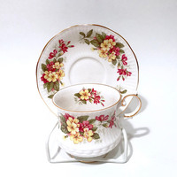 Queens Rosina Floral Tea Cup  Wild Flowers  Primrose  Pink Yellow Flowers  Gold Trim  Shabby Chic  English Bone China Vintage Tea Cup