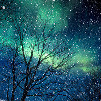 Nature photography winter photography northern lights snow photo blue green starry night falling night zodiac astrology - Aurora 5x5