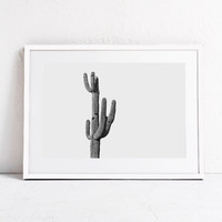 Cactus Photo-Landscape Photography Cactus Wall Art Printable-Instant Download-Large Printable-24x36-Horizontal Wall Art Print-Cactus Decor