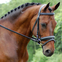 Red Barn Salute Weymouth Bridle