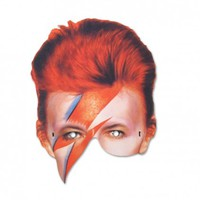 DAVID BOWIE MASK from MAIDEN   Made By    £4.00   BOUF