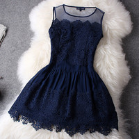 Perfect Hollow Out With Lace Dress
