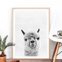 Animal Alpaca Art Painting and Poster , Alpaca Photography Canvas Paintings Picture South American Animal Wall Art Decor