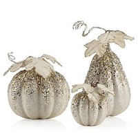 Beaded Pumpkin & Gourd | Harvest | Holiday | Decor | Z Gallerie