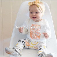 2016 baby girl clothes cotton long-sleeved T-shirt + pants 2/pcs cartoon eagle baby clothing newborn  baby boy clothing set