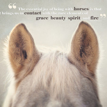 Horse Art, Horse Photography, Horse Quotes, Joy of Horses, Horse Ears, Typography, Text, Type, Horse Quotation, Beige, Tan, Cream.