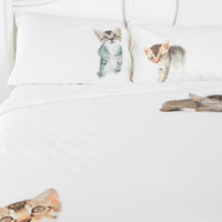 Flat Cat Sham - Set Of 2