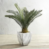 "Outdoor Potted 38"" Faux Cycas"