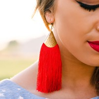 Jupiter Fringe Trim Earrings (Red/Gold)