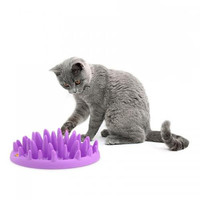 Cat Catch Interactive  Slow Feed Toy