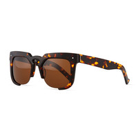 Temple Cutoff Square Sunglasses, Tortoise - Grey Ant