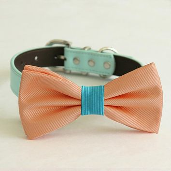 Peach bow tie collar, handmade Puppy bow tie, XS to XXL collar and bow adjustable dog of honor ring bearer, Peach turquoise bow tie , Wedding dog collar